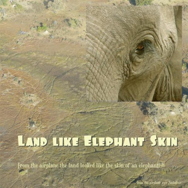 The Land was Like Elephant Skin