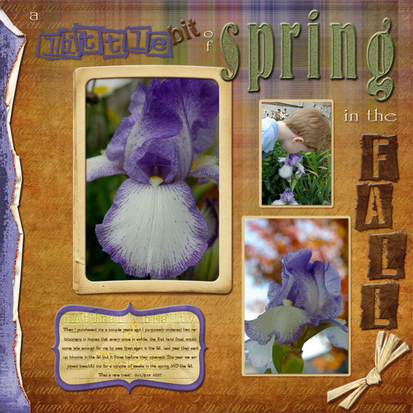 11/20 Freebie Challenge: A Little Bit of Spring in the Fall