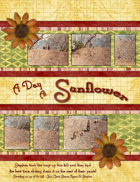 A Day At Sunflower
