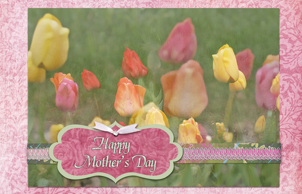 Mother's Day Tulips card