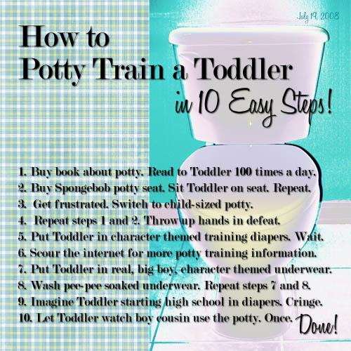 20080722 How to Potty Train a Toddler - in 10 Easy Steps&#33