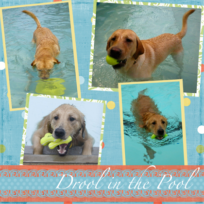 Drool in the Pool (page 2)