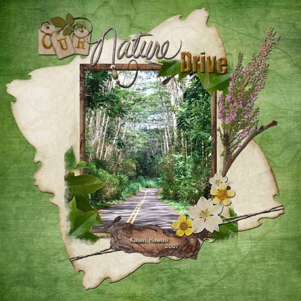 Our Nature Drive