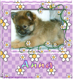 dogs mans best friend, this is anna,
