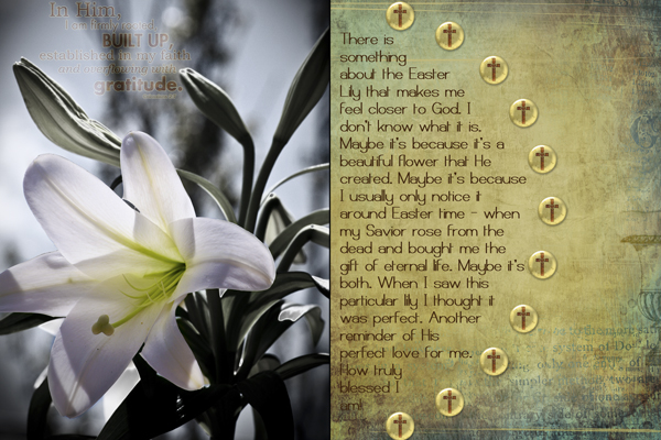 Easter Lily - Photo Challenge Crop