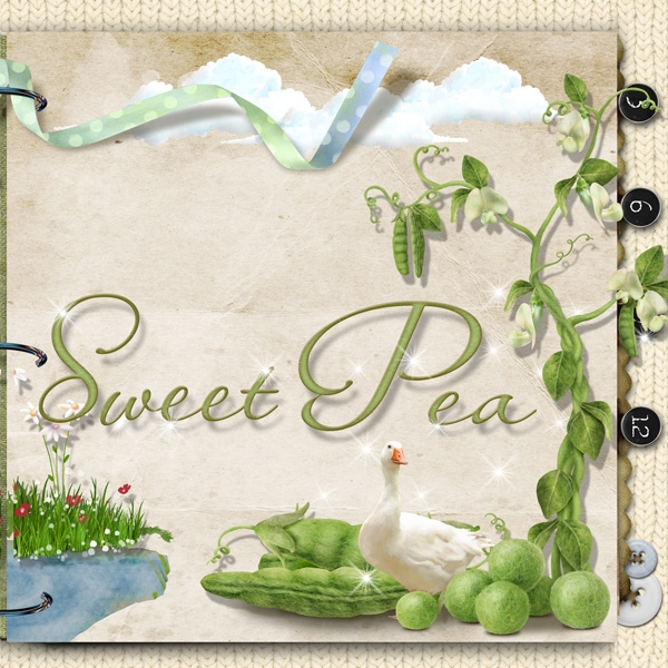 Sweet Pea right