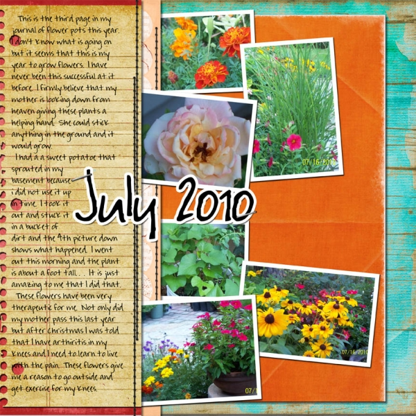 Saturday color challenge July 2010 flower journal