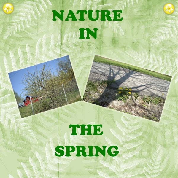 HNC Nature In The Spring