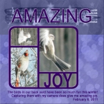 Amazing Joy