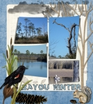 Sat. Color Challenge 2-12  Bayou Winter