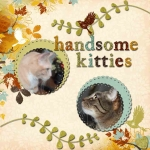 Thursday 3-3-11 Challenge -- Handsome Kitties