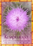 1st ATC Feb 2011 - Knapweed