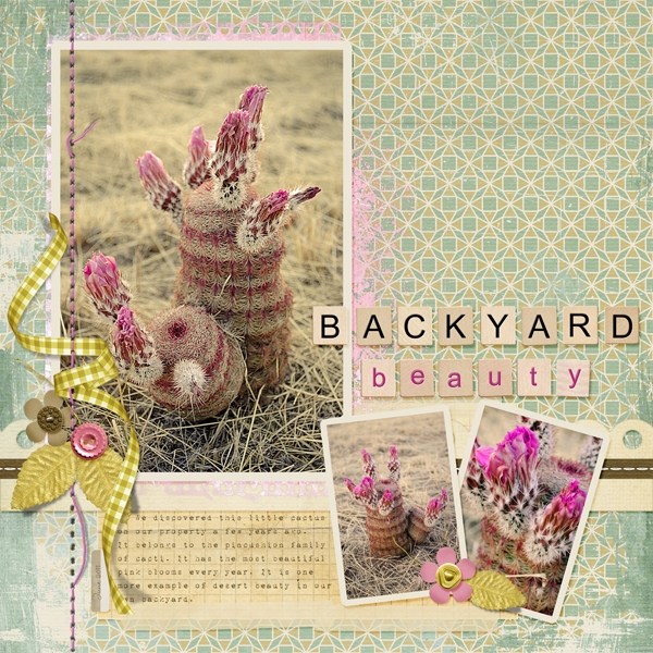 Task 4 - Backyard Beauty