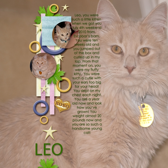 Leo's a year old!