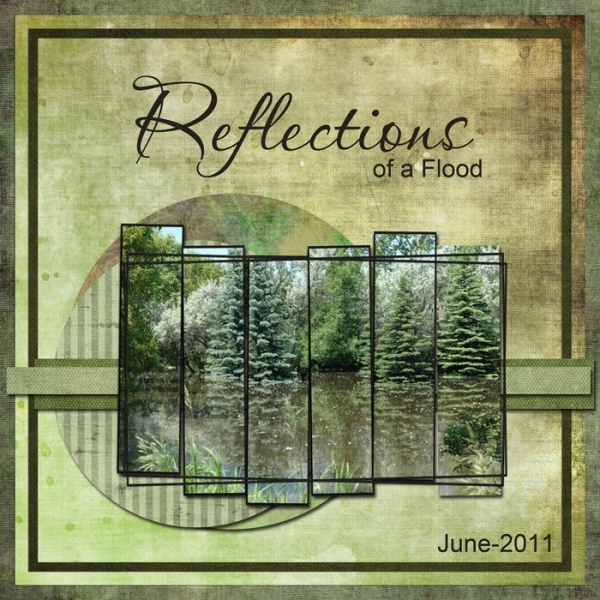 Reflections of a Flood