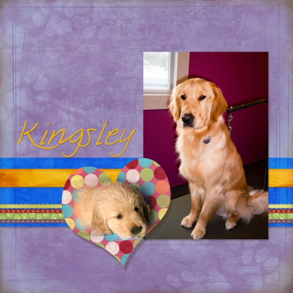 Kingsley_0_FrontCover