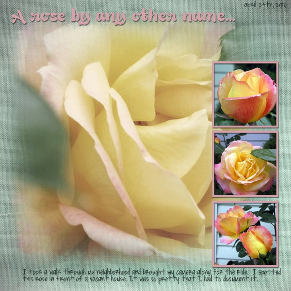 A Rose by Any Other name..