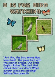 B Is For Bird Watching -- May 2012 ATCs About Me