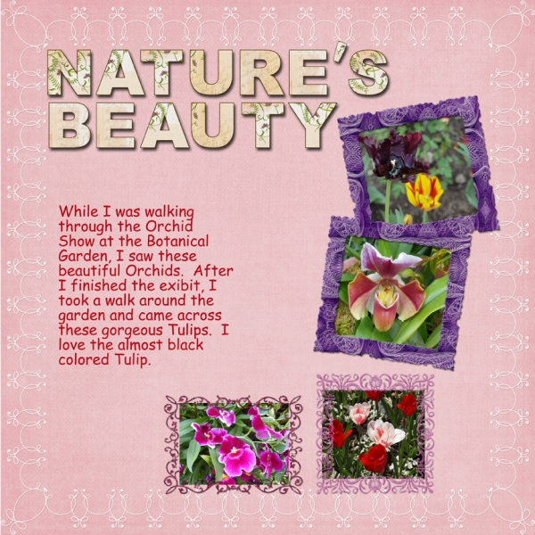 Task 16 -- Nature's Beauty
