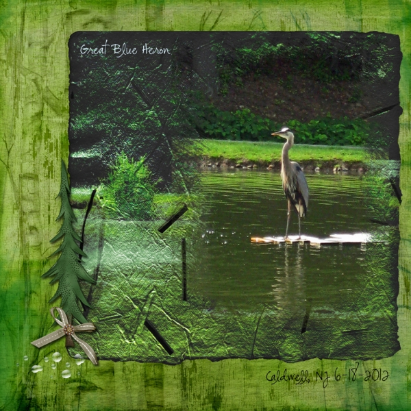 "Re-JUNE-venate: Layout 4 - ""Great Blue Heron"""