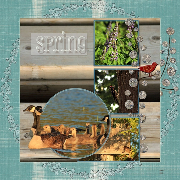 Spring's New Beginnings 2012