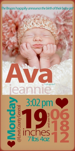 Ava's Birth Announcement