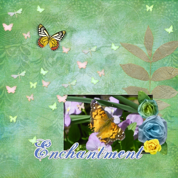 Saturday 7-14-12 Color Challenge -- Butterfly