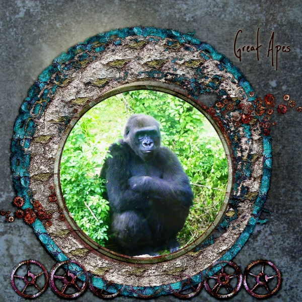 June Swap Crop - For Carol - Gorilla