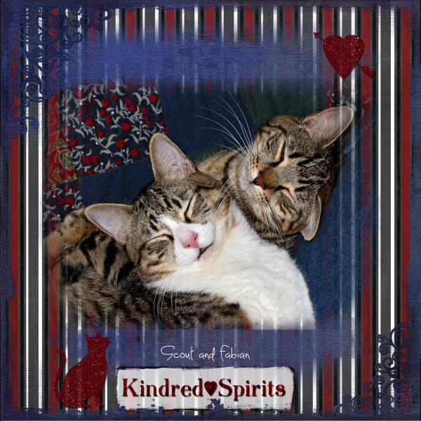 Sept 13 - Cute and Cuddly - Kindred Spirits