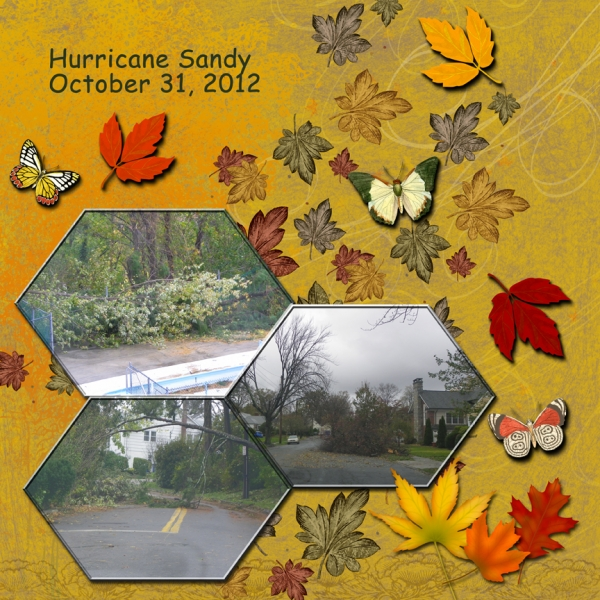 Hurricane Sandy -- More Fallen Trees