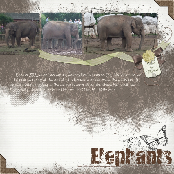 Build a Cake - Elephants