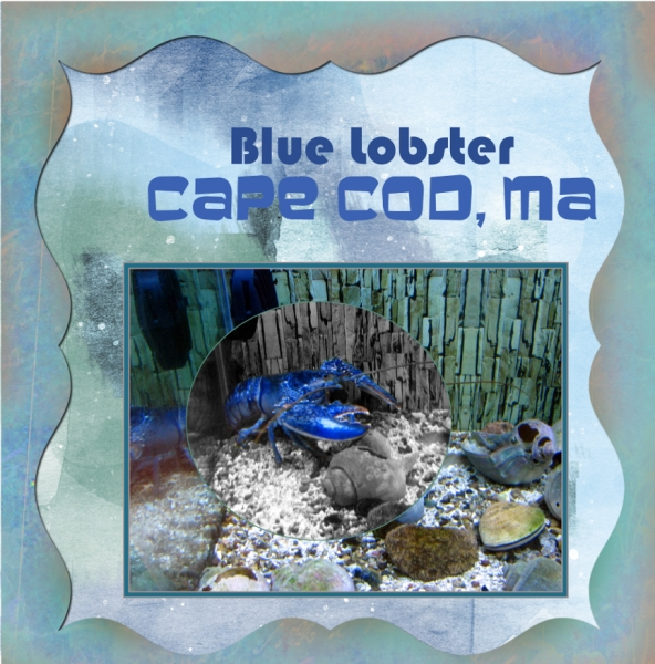 Photo Manipulataion - Blue Lobster