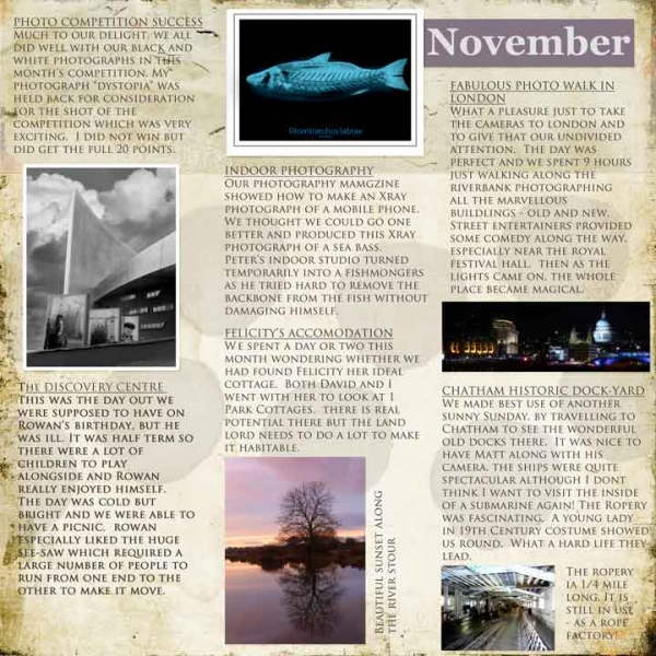 Project SG Challenge November Diary