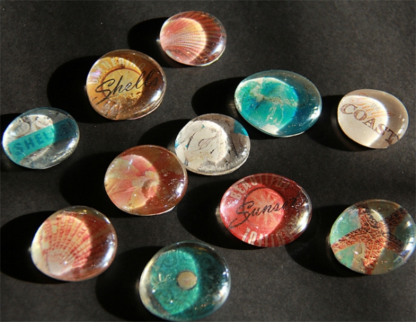 Sea Shell Glass Magnets