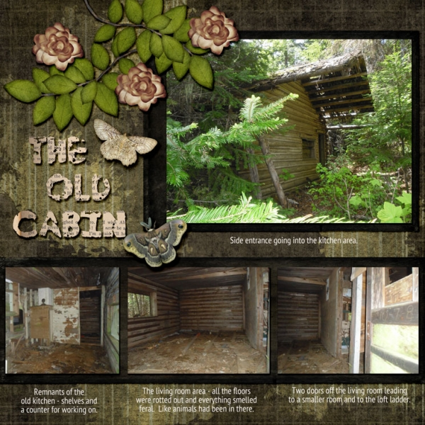 The Old Cabin 2