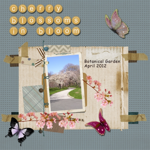 Tuesday 2-5-13 Freebie -- Cherry Blossoms