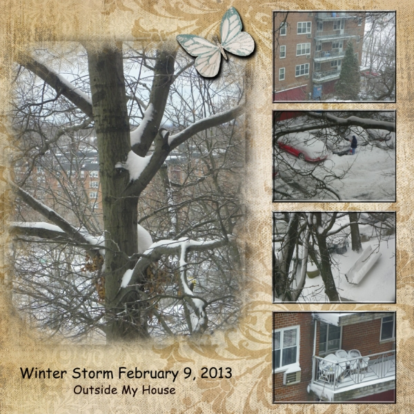 Thursday 1-31-13 Challenge -- Storm Day