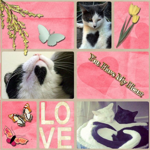 Saturday 2-2-13 Color Challenge -- Valentine Cats