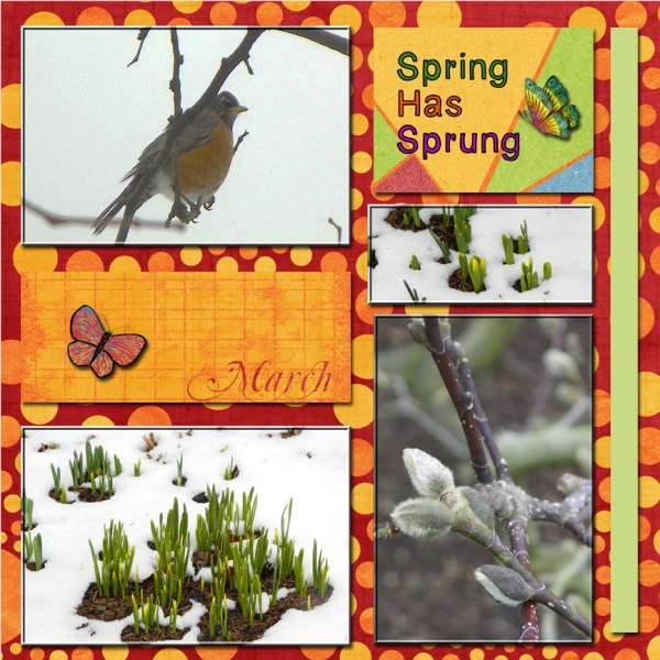 Saturday 2-16-13 Color Challenge -- Spring Has Sprung