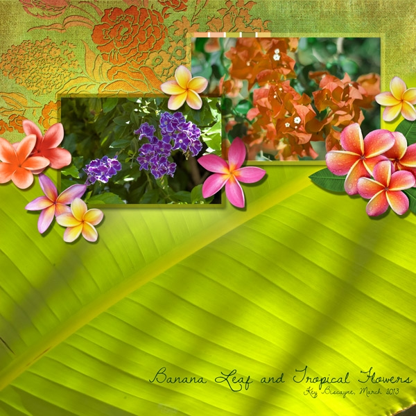 March 23 - Sat Color - Banana Leaf and Tropical Flowers