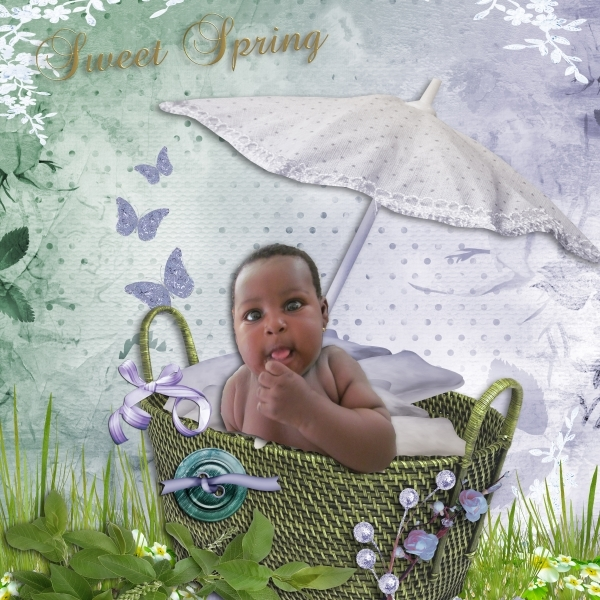 Sweet spring in a basket