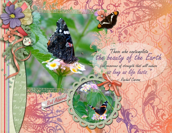 EarthDay2013 - Red Admiral