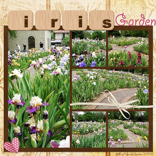 Color Challenge 8/24. Iris Garden