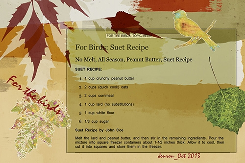 For the Birds-Suet Recipe
