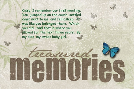 Gratitude Day 43 -- Treasured Memories