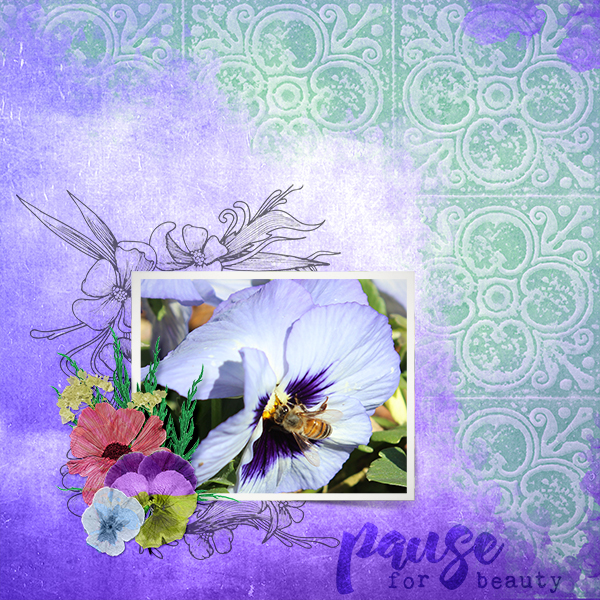 pause For beauty