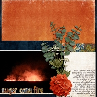 Blog Challenge - Sketch - Sugar Cane Fire