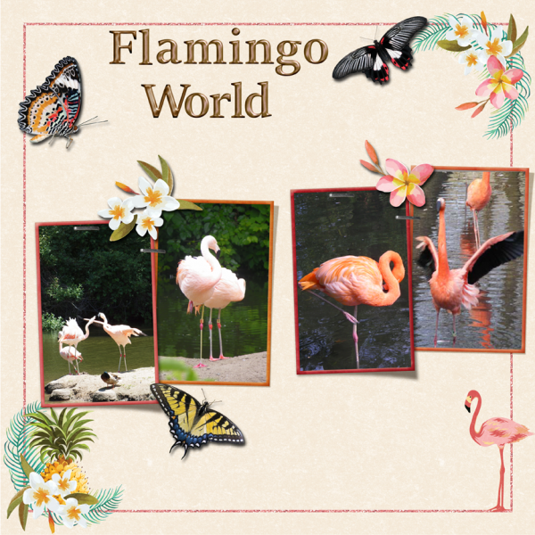 Flamingo World -- 9-3-16 Weekend Challenge