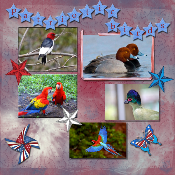 Patriotic Birds -- Weekend Wildcard 7-9-16 Challenge