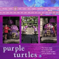 30/4/16 - Purple Turtles